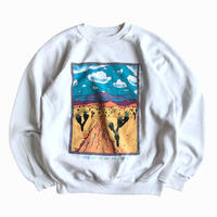 Hanes / New Mexico Graphic Print Sweatshirt