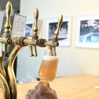 【ニュースクール】 オリジナルクラフトビール早稲田ゴールデン、早稲田IPA(各4本)