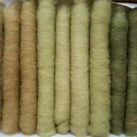 緑綿の手紡ぎ用篠綿10本 バラエティセット