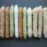 無染色・自家自然栽培綿の篠(手紡ぎ用綿)12本<Undyed, naturally-homegrown cotton puni (cotton for hand spinning)×12
