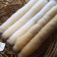 綿の簡易手紡ぎキット 自家栽培和綿の篠10g付 スピンドル無し