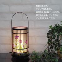 竹彩1号 【回転筒付き】