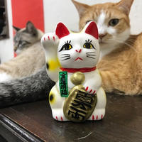 Fotune cat(palm-size)/Seto-yaki