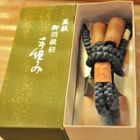 【新古品】【未使用】作家物 丸組の羽織紐 抹茶