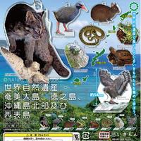 NTC 世界自然遺産奄美大島、徳之島、沖縄島北部及び西表島 アクリルマスコット