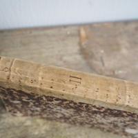 古書   羊皮紙背表紙