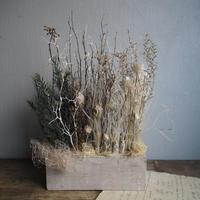 smokey  arrangement  B