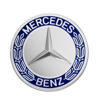 Mercedes-Benz 純正 ローレルリース ホイールセンターキャップ ( ハブキャップ  ) A1714000125 5337