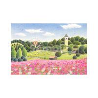 花と遊ぶ休日【堺・ハーベストの丘】