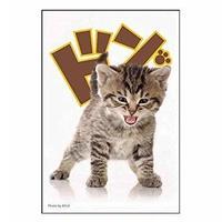 ブロッコリーキャラクタースリーブ 「子猫」  【BR-190】