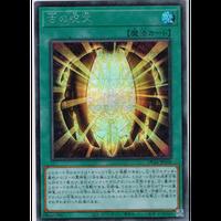 ★DP24-JP004 古の呪文【シークレットレア】