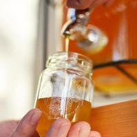 伊萬里和蜂 天然蜂蜜 1000g (瓶のみ)