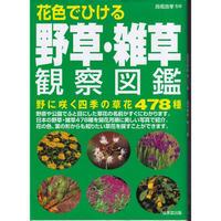 花色でひける 野草・雑草観察図鑑 高橋 良孝 2004/3/15