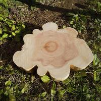 薪割り台 切り株 ひのき 丸太 約30x28cm 厚さ約4cm