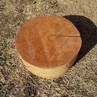 刳り抜き丸太 薪割り台 切り株 杉 約29x29cm 厚さ約12cm