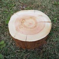 薪割り台 切り株 ひのき 丸太 約23x23cm 厚さ約13cm
