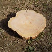 薪割り台 切り株 ひのき 丸太 約26x22cm 厚さ約5cm