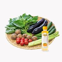 [iinoブランド]「食の都庄内  野菜セット」&「 庄内柿酢を使ったハーモニードレッシング」セット