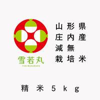 【令和2年産】山形県庄内産 減無栽培米「雪若丸」(精米5kg)