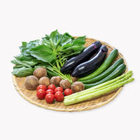 [iinoブランド]食の都庄内  野菜セット