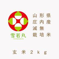 【令和2年産】山形県庄内産 減無栽培米「雪若丸」(玄米2kg)