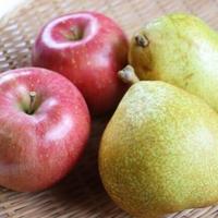 【予約受付中/11月上旬発送予定】【3kg(各3~4玉)】ラ・フランス&葉とらずりんごセット