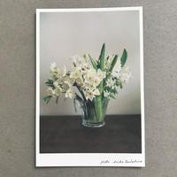季節の葉書 白い花束
