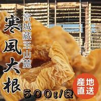 【予約販売中】【こだわり伝統食材】蔵王山麓 寒風大根 500g /袋 産地直送