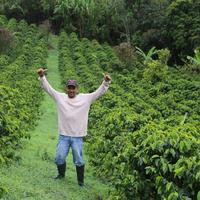 ラ・パルセリタ農園豆1㎏ダークロースト