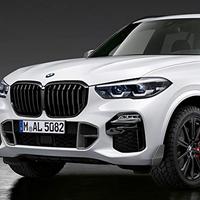 BMW純正部品 M PERFORMANCE G05 X5 用ブラックキドニー グリル