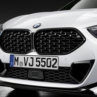 BMW純正部品 M PERFORMANCE F44 2シリーズ グランクーペ 用ブラックキドニー グリル メッシュタイプ