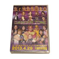 2013年4月29日 ディアナ2周年記念大会DVD