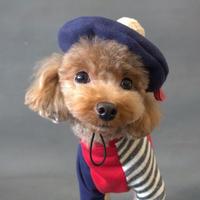 ファーぽんぽんベレー帽(Navy×Mocha)