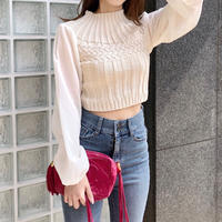 chiffon sleeve knit / beige