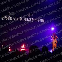 9月7日(土)中野サンプラザ002【Lサイズ】