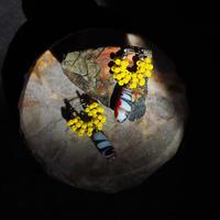 India grass pierce/earrings - yellow-