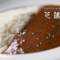 焼肉芝浦 特製カレー 500g (冷凍)
