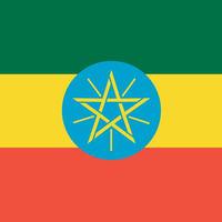 エチオピアモカ    Mocha Yirgacheffee