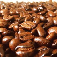 コーヒー豆2袋(同梱)