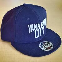YAMAGATA CITY Flatvisor CAP_Nvy