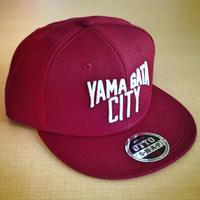 YAMAGATA CITY Flatvisor CAP_Bgd