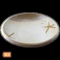 (強)唐津塗分つた 8.0浅鉢    く09-098-13 寸法:25φ×5H㎝ 900g