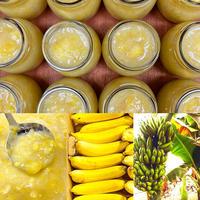 睦沢町産 無農薬バナナジャム