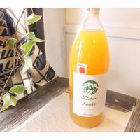 【セレクト】リーバーアップル りんごジュース (プロテオグリカン入り)