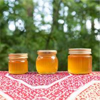 非加熱 日本みつばちの蜂蜜