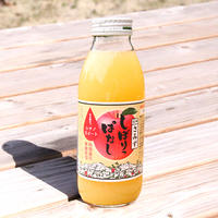 【JA-01】しぼりっぱなしりんごジュース(シナノスイート) 350ml