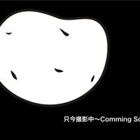 新じゃが!「紫月」(1.6kg)〜なめらかもっちりの新品種を試したい方に〜
