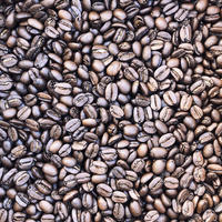 農園石窯青空焙煎珈琲 サパティスタフェアトレードコーヒー 200g