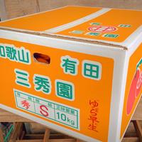 有田みかん(10kg)