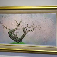 中島千波「夢殿の枝垂桜」リトグラフ ED186/250 本人サイン入